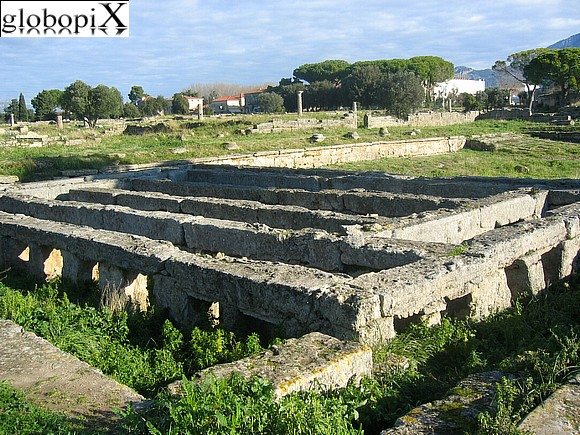 Paestum - Excavations at Paestum