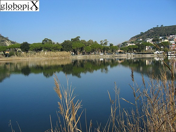 Foto campi flegrei lago lucrino 3 globopix for Lago lucrino