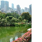 Photo: Hong Kong - Botanic Garden