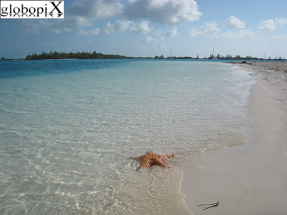 Cayo Largo - Spiaggia Sirena