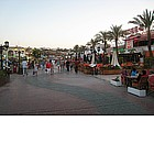 Photo: Naama Bay