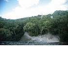 Photo: Foresta pluviale a Tikal