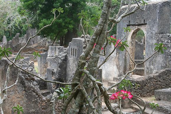 Le rovine dell'antica città di Gede Gedeewatamu_KN02GE004