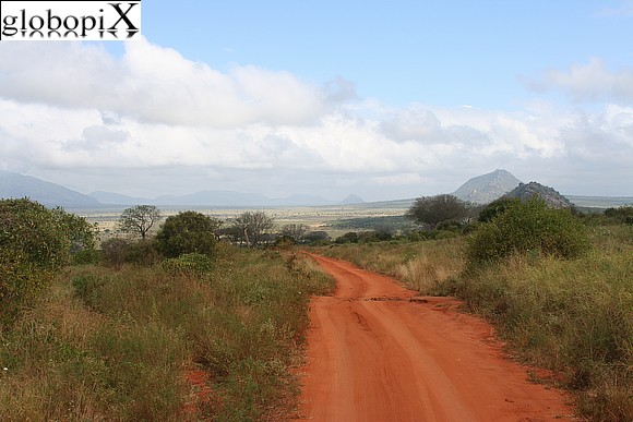 Safari Tsavo - Panorama