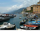 Photo: Marina di Camogli