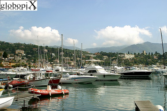 Santa Margherita - The harbour