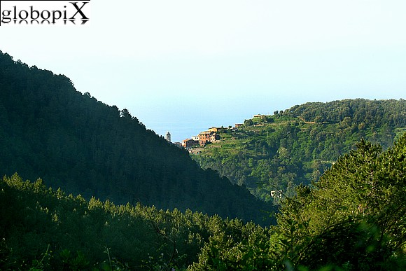 Cinqueterre - View from a road up high of the Cinque Terre