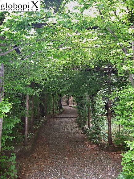 Foto varese carpineto nei giardini estensi globopix for Laghetti nei giardini