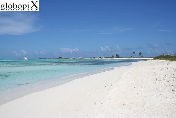 Los Roques - Spiaggia dellIsola di Crasky