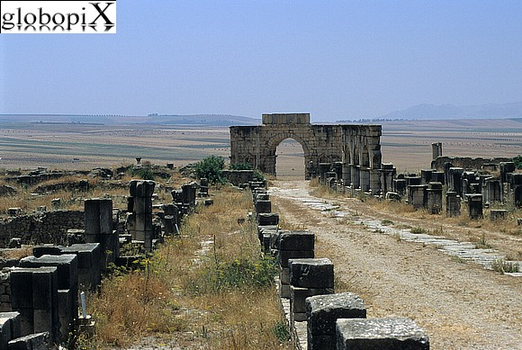 Imperial Cities - Volubilis
