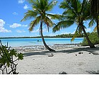 Photo: Spiaggia a Rangiroa