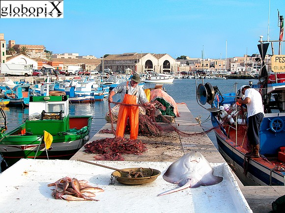 Isole Egadi - Fishing in Favignana