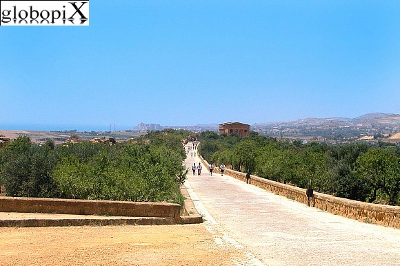 Agrigento - Panorama of the Valle dei Templi
