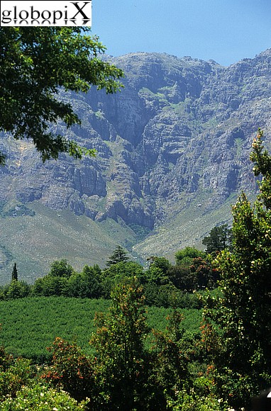 SouthAfrica - Paarl