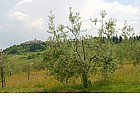 Photo: Views of the Chianti.