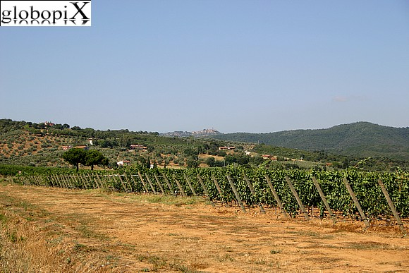 Maremma - Landscapes of the interior