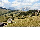 Photo: Alpe di Siusi Sella group