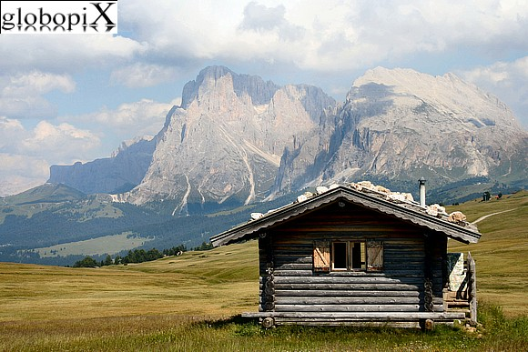 Dolomiti - Malga on the Alpe di Siusi