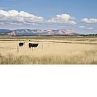 Photo: Prairie in the West