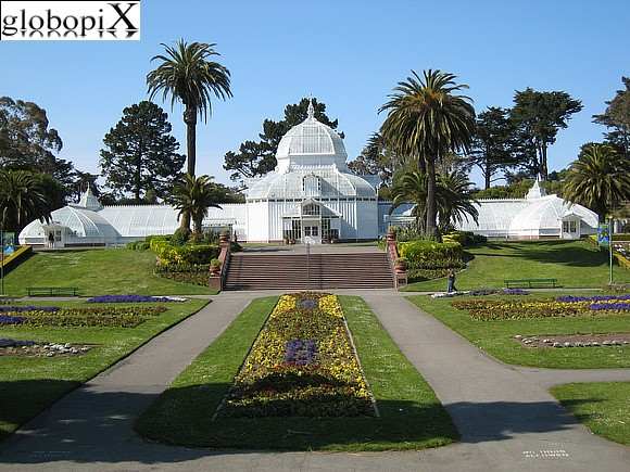 San Francisco - Conservatory of flowers