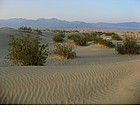 Foto: Death Valley - Sand Dunes