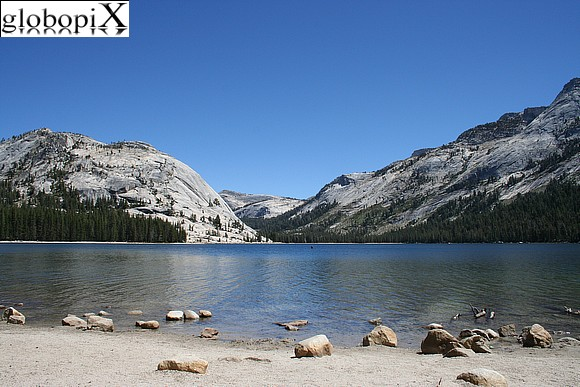 Yosemite - Tenaya Lake