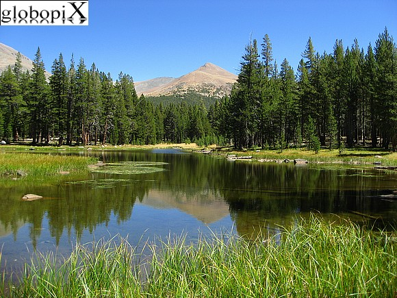 Yosemite - Tuolumne Meadows