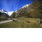 Photo: The way to Gran Paradiso